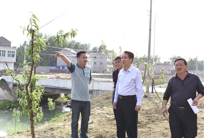 市检察院前往怀远县双桥集镇杨集村开展精准扶贫对接工作.JPG